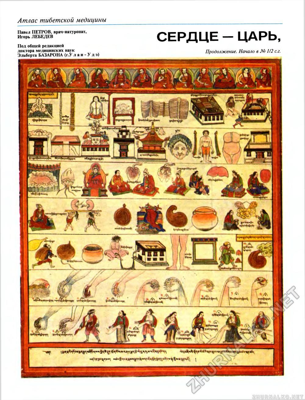 Врач тибетской медицины 10 фотография