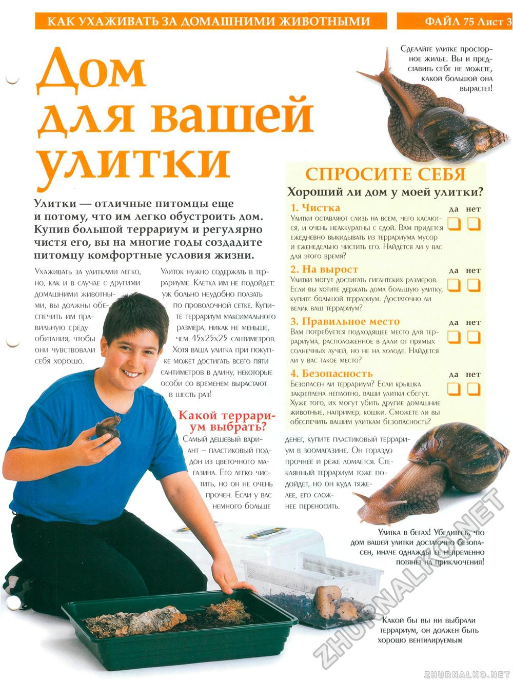 Чем кормить улиток: полезные советы и рекомендации 2
