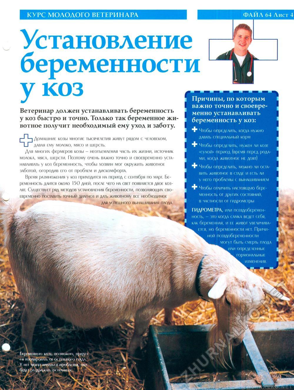 Кормление коз после окота Уход за козой после окота