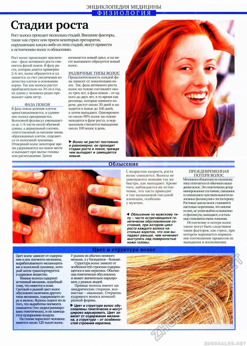 Этапы роста волос на теле