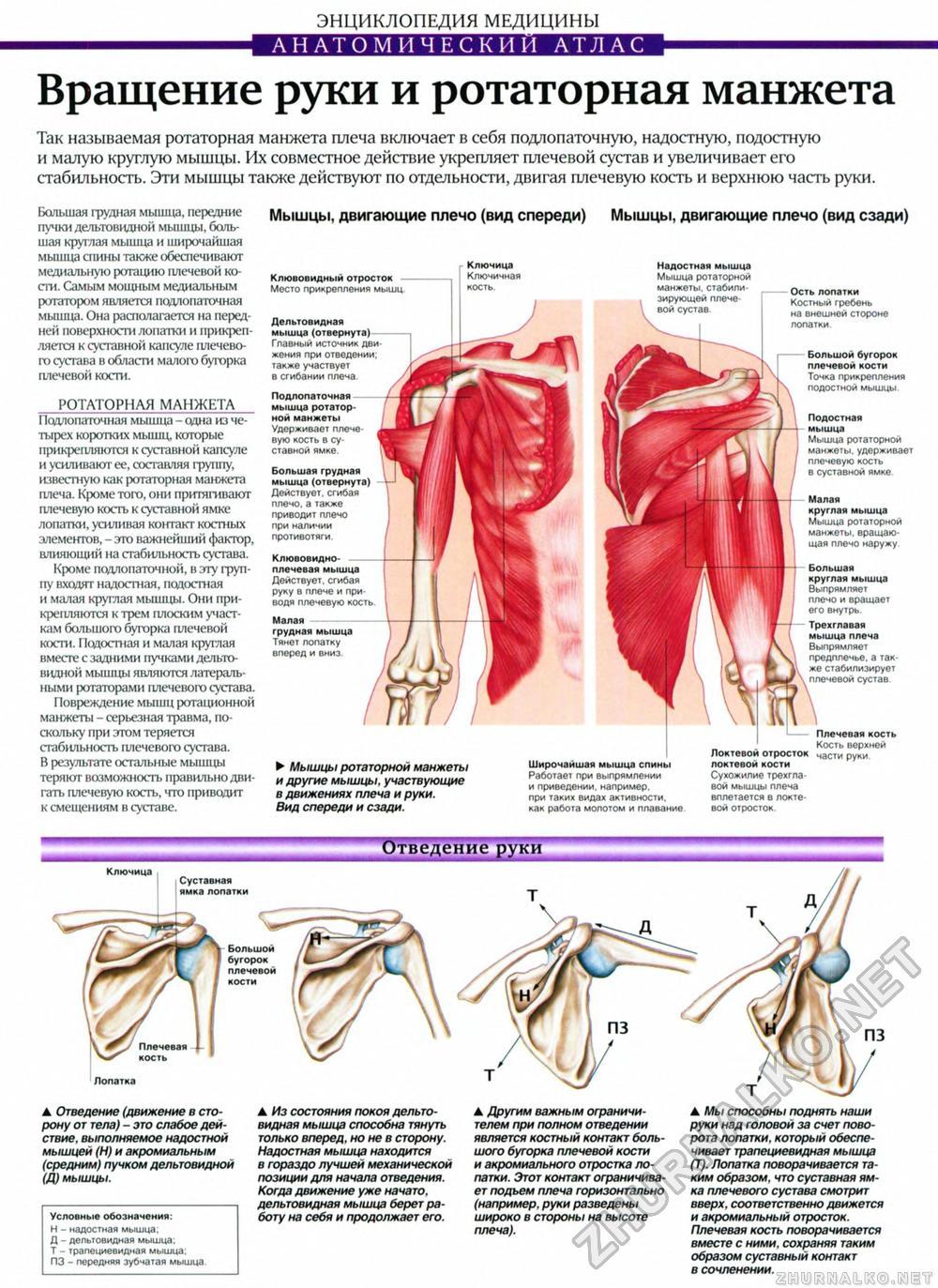 Растяжение связок голеностопного сустава чем лечится