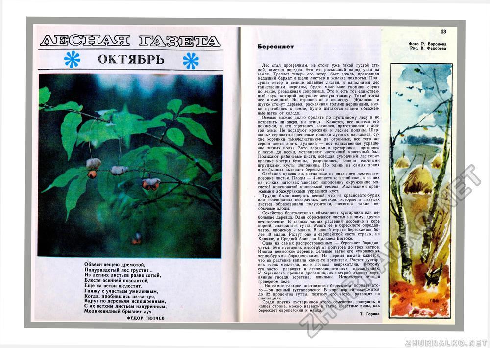 Журнал юный натуралист о зимующих птицах