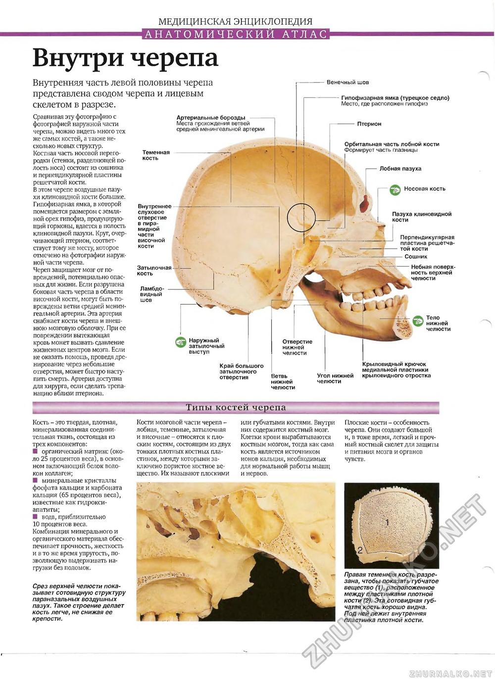Малыш на приеме у невролога. Форма и размер 25